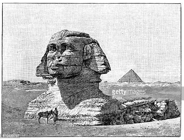antique illustration of great sphinx of giza - the sphinx stock illustrations, clip art, cartoons, & icons
