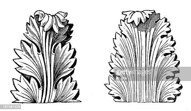 antique illustration of greek acanthus (ornament) - architectural feature stock illustrations, clip art, cartoons, & icons