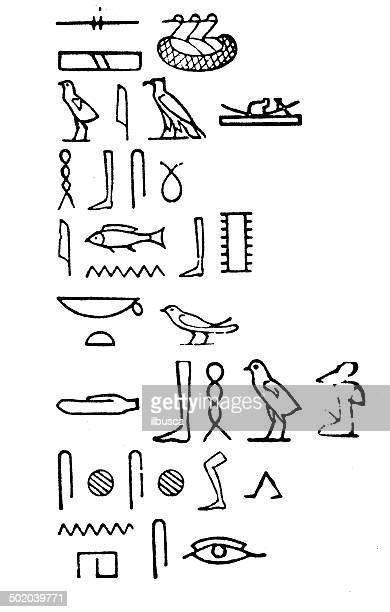 illustrations, cliparts, dessins animés et icônes de ancienne illustration de hieroglyphs - hiéroglyphe