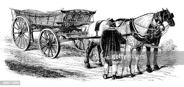 antique illustration of horse carriage - carriage stock illustrations