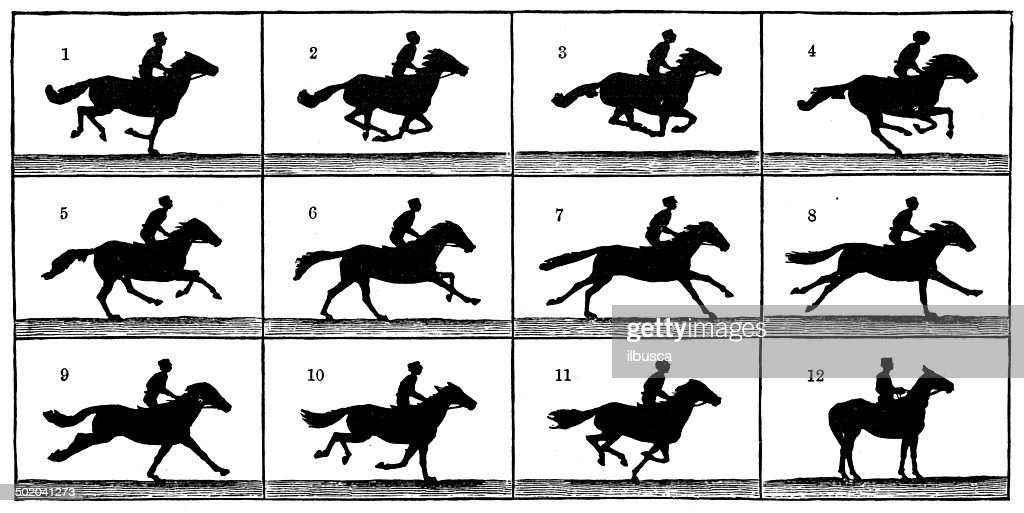 Antique illustration of horse in motion : stock illustration