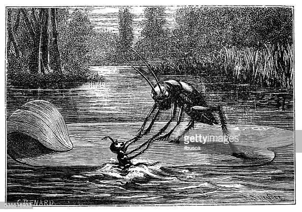 Antiguidade ilustração de humanizado de críquete e insectos