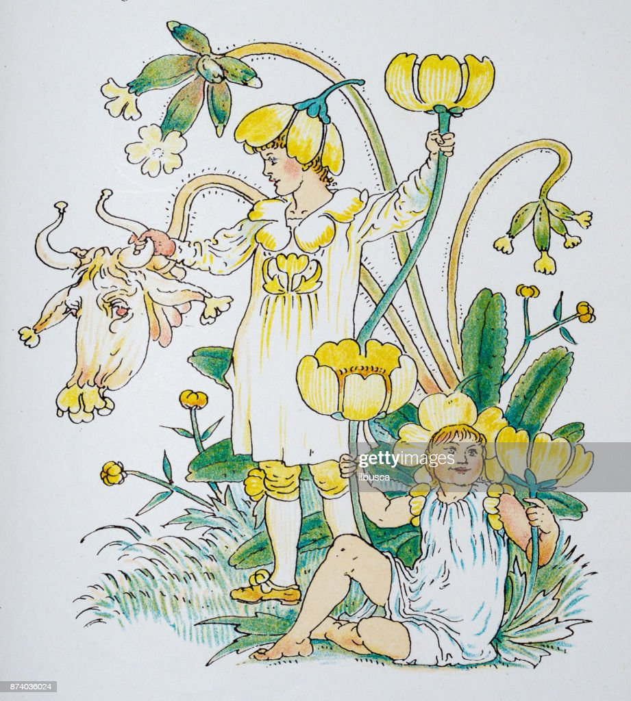 Antique illustration of humanized flowers and plants: Buttercups and Cowslips : stock illustration