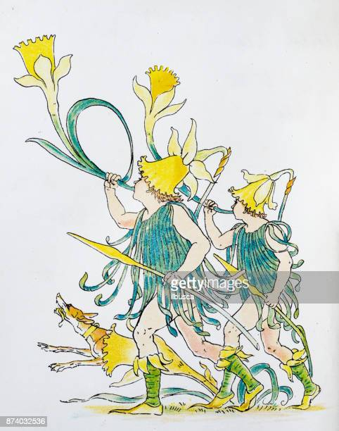 antique illustration of humanized flowers and plants: daffodils - daffodil stock illustrations, clip art, cartoons, & icons