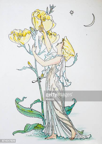 Antique illustration of humanized flowers and plants: Evening primrose