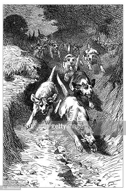 Antique illustration of hunting dogs running in a hunt