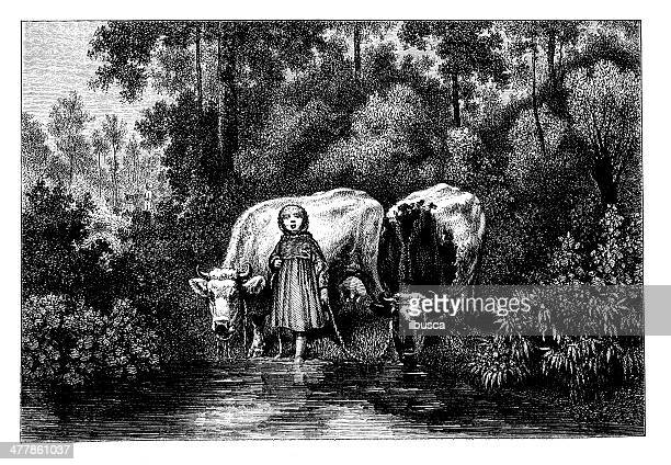 antique illustration of little girl with cattle - mammal stock illustrations, clip art, cartoons, & icons