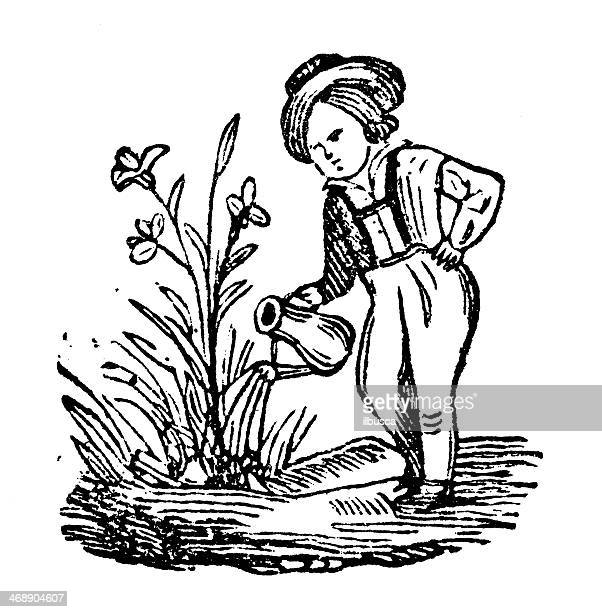 Person Watering Plants Drawing Stock Illustrations Getty Images