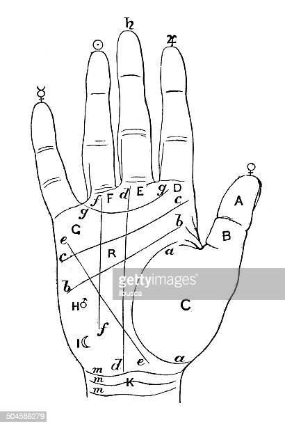 Ancienne illustration de Palmistry