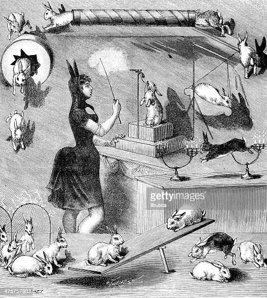 antique illustration of rabbit circus - magical equipment stock illustrations, clip art, cartoons, & icons