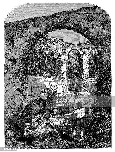 antique illustration of roman aqueduct and shepherd - mammal stock illustrations, clip art, cartoons, & icons