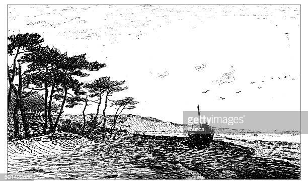 Antique illustration of sand dunes of Pylat and beach