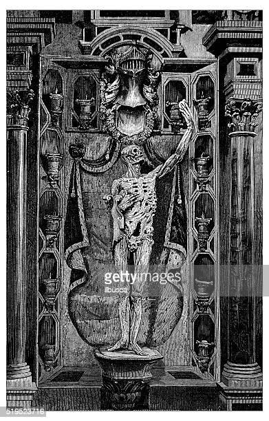 ilustrações de stock, clip art, desenhos animados e ícones de antigo ilustração de esqueleto do homem agarrando seu coração - nicho