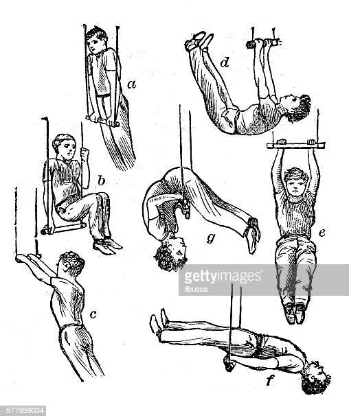 antique illustration of sports and exercises: artistic gymnastic trapeze - gymnastics stock illustrations