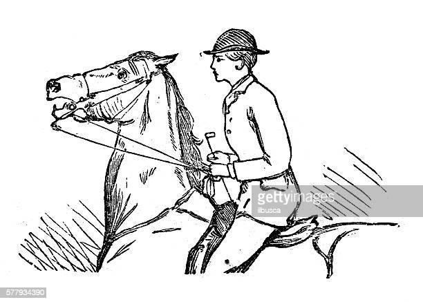 Antique illustration of sports and exercises: Horseback riding
