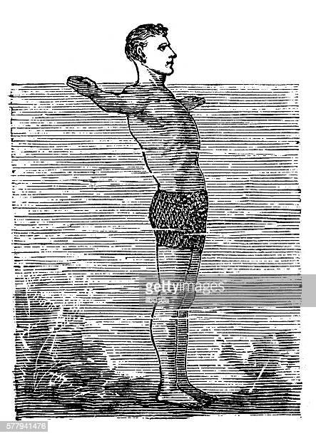 antique illustration of sports and exercises: swimming - swimming stock illustrations, clip art, cartoons, & icons