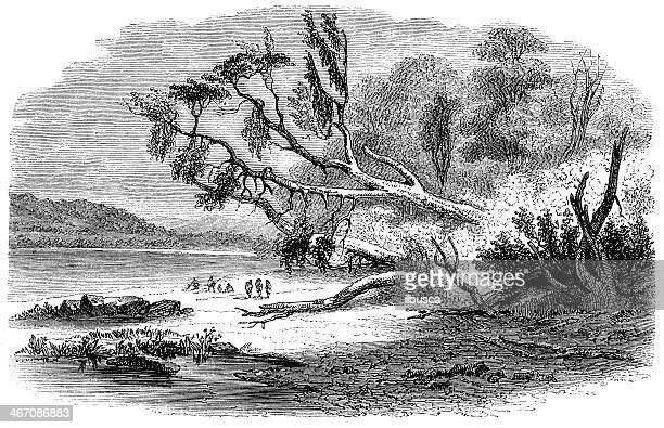 Antique illustration of Strait Magellan area