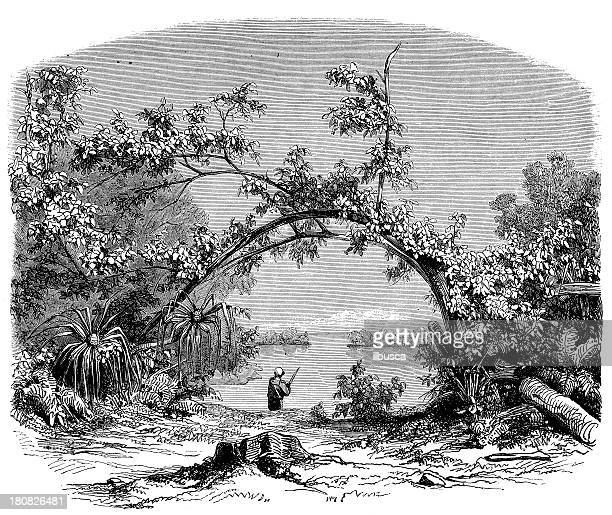 antique illustration of tahiti scene - natural arch stock illustrations, clip art, cartoons, & icons