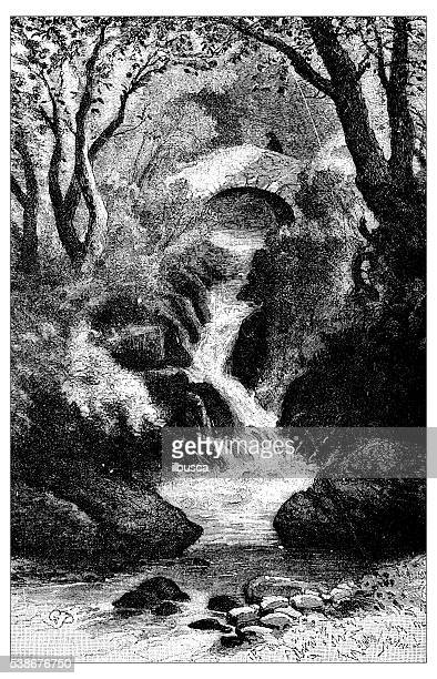 antique illustration of torrent - rapid stock illustrations