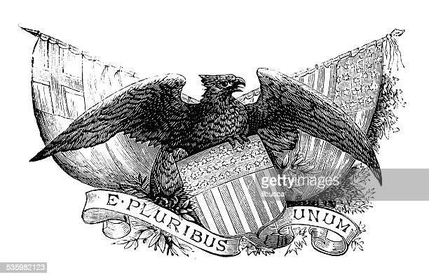 ilustraciones, imágenes clip art, dibujos animados e iconos de stock de antiguo escudo ilustración de nosotros - american revolution