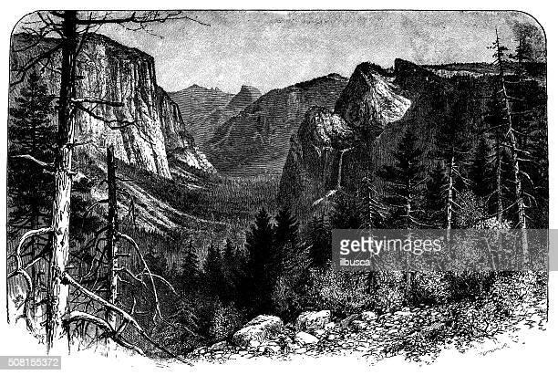 ilustraciones, imágenes clip art, dibujos animados e iconos de stock de anticuario ilustración de yosemite valle de artista punto - valle