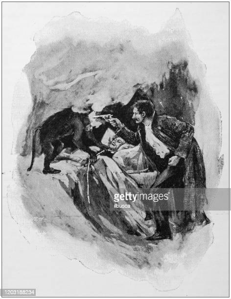 antike illustration: einen affen erschießen - fire ape stock-grafiken, -clipart, -cartoons und -symbole