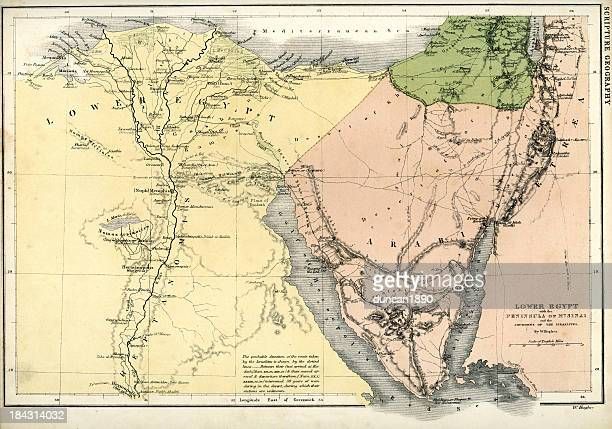 antique map of lower egypt - nile river stock illustrations, clip art, cartoons, & icons