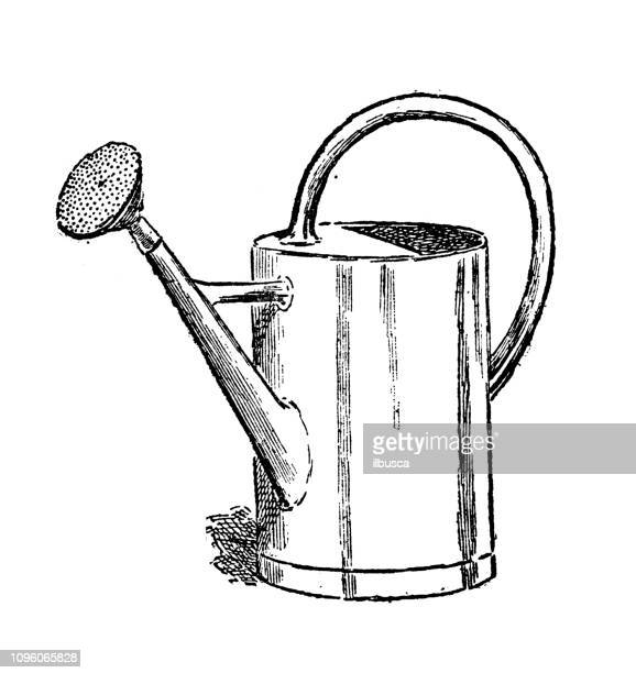 antique old french engraving illustration: watering can - watering can stock illustrations