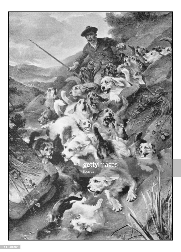 Antique photo of paintings: Bolting the otter : Stock Illustration