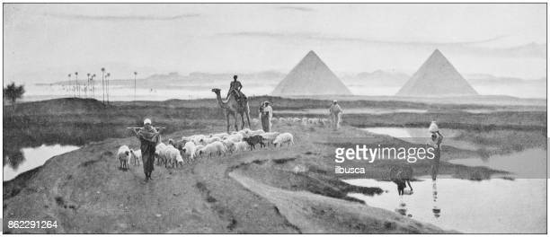 antique photo of paintings: egypt - nile river stock illustrations, clip art, cartoons, & icons