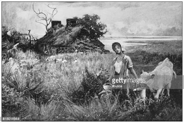 antique photo of paintings: farmer - calcium stock illustrations, clip art, cartoons, & icons
