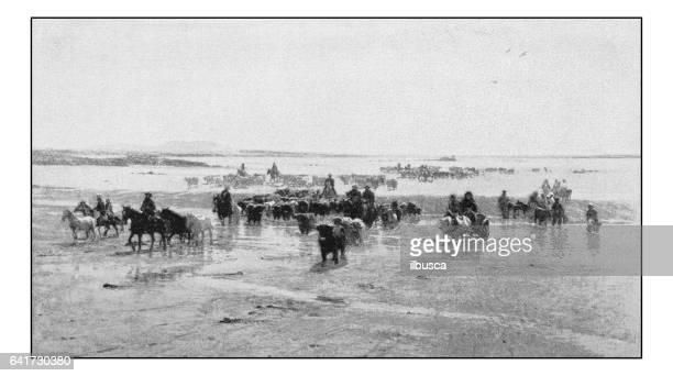 Antique photo of paintings: Herding