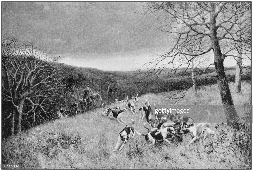Antique photo de peintures: chasse : Illustration