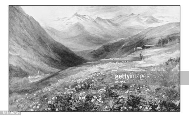 antique photo of paintings: landscape - ranunculus stock illustrations, clip art, cartoons, & icons