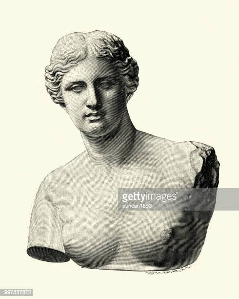 Aphrodite of Milos, Venus de Milo