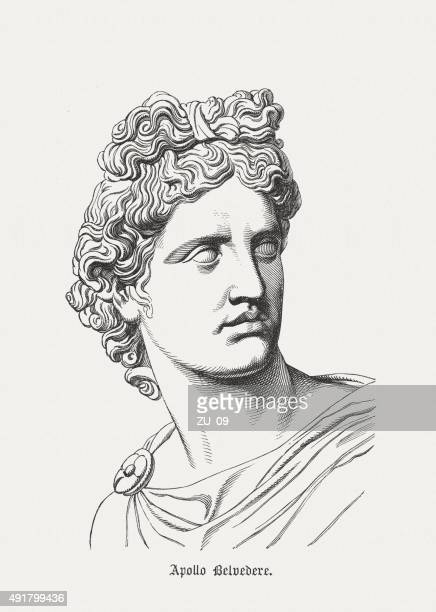 apollo belvedere, ancient sculpture, published in 1878 - greek culture stock illustrations, clip art, cartoons, & icons