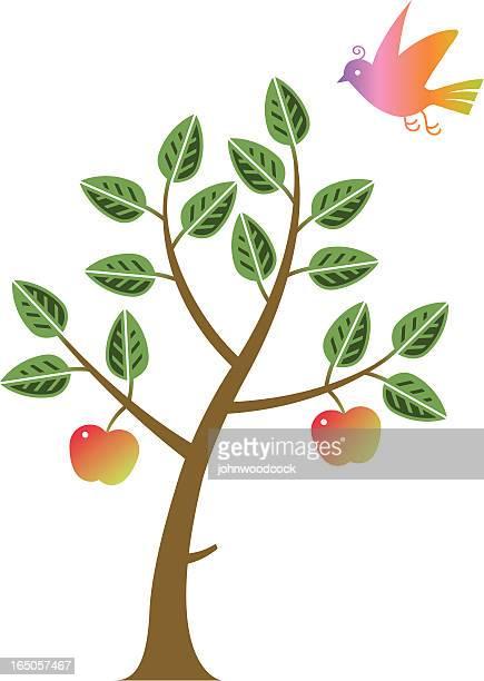 アップルツリー