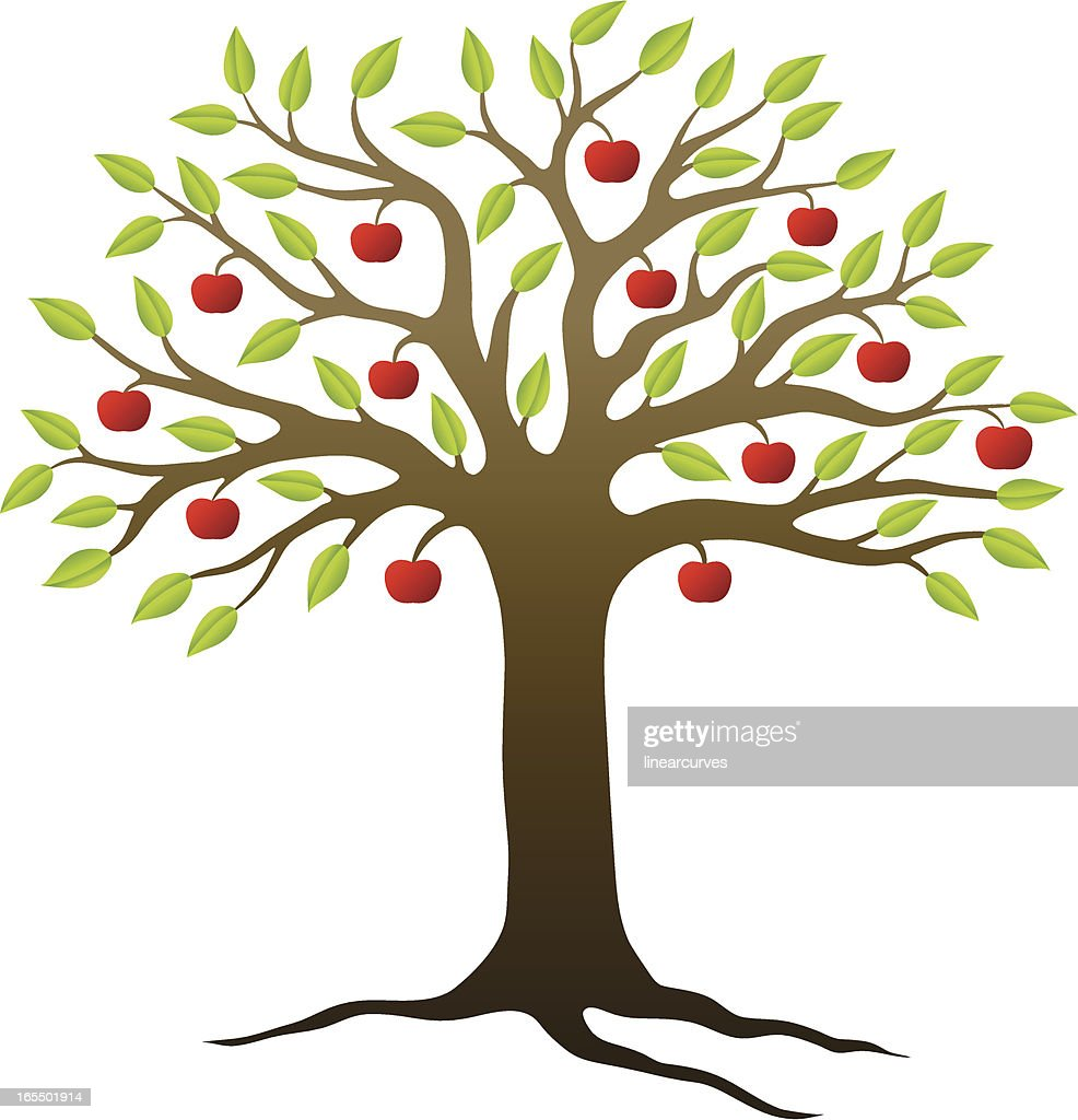 apple tree vector art getty images rh gettyimages com tree vector artwork tree vector art photoshop