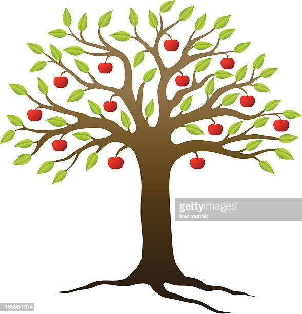 stockillustraties, clipart, cartoons en iconen met apple tree - appelboom