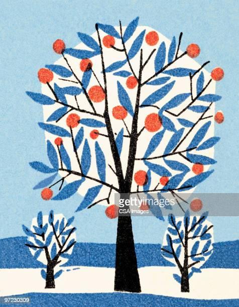 apple tree in winter - branch stock illustrations