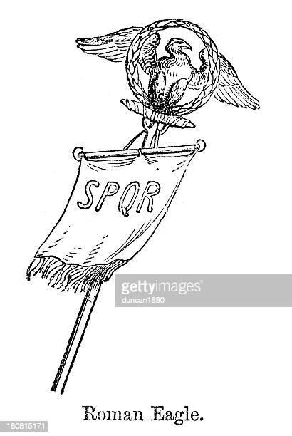 aquila - roman eagle standard - l'aquila stock illustrations