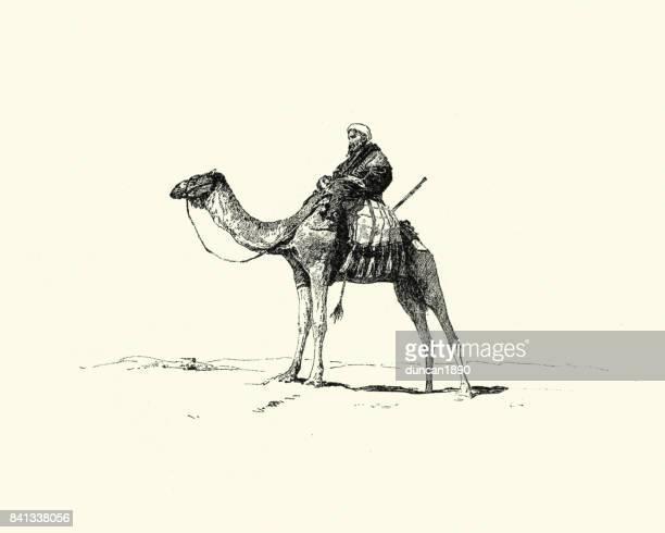 19 世紀、ラクダに乗ってアラブ - アラビア風点のイラスト素材/クリップアート素材/マンガ素材/アイコン素材