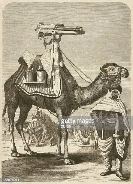 arabs with a gatling gun on a camel, published 1872 - arabian horse stock illustrations, clip art, cartoons, & icons