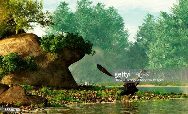 ilustraciones, imágenes clip art, dibujos animados e iconos de stock de archaeopteryx on the shore of a river. - jurásico