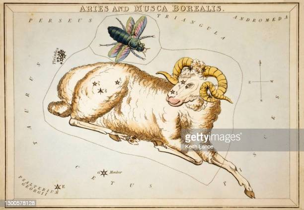 aries, the first sign of the zodiac - star chart stock illustrations