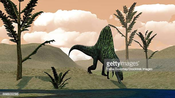 Arizonasaurus dinosaur walking in the desert amongst pachypteris trees.
