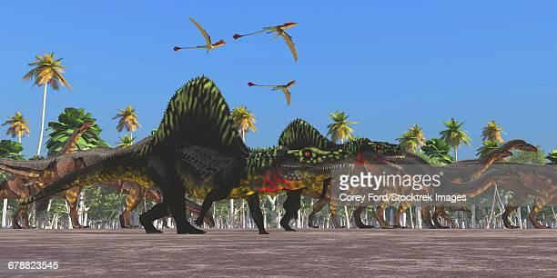 Arizonasaurus dinosaurs follow along with a herd of Plateosaurus.
