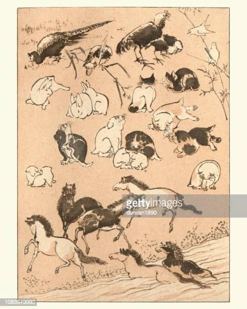 illustrations, cliparts, dessins animés et icônes de art du japon, croquis d'animaux par massayoshi - estampe japonaise