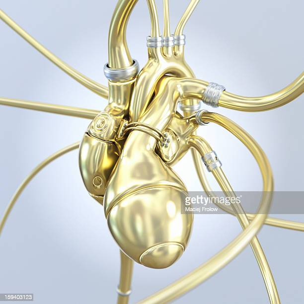 artificial heart made of gold - anatomical model stock illustrations, clip art, cartoons, & icons