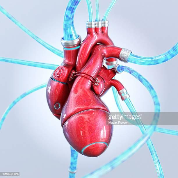 ilustraciones, imágenes clip art, dibujos animados e iconos de stock de artificial heart made of red metal - modelos del cuerpo humano